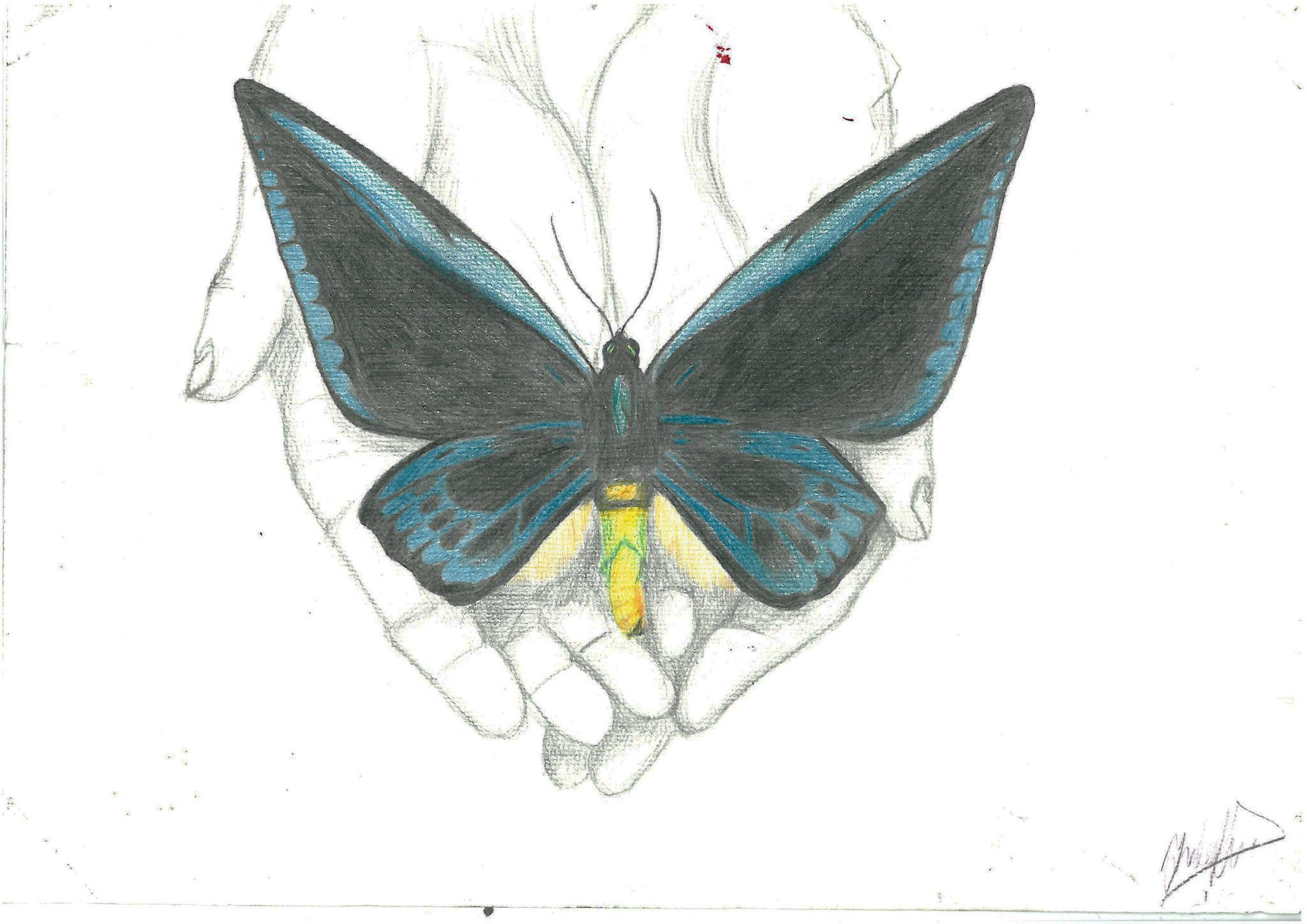 Kunstwerk gemaakt door Jeej getiteld Vlinders in handen